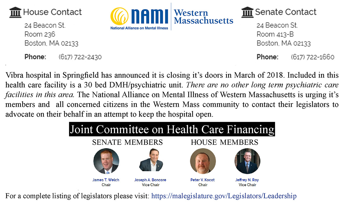 the national alliance on mental illness essay The national alliance on mental illness (nami) is a nationwide grassroots  advocacy group,  this article is written like a personal reflection or opinion  essay that states a wikipedia editor's personal feelings about a topic please help  improve it.